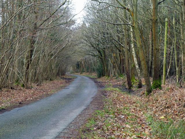 Binsted Lane