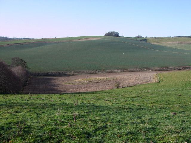 Bowl barrow south of Whitecomb Plantation