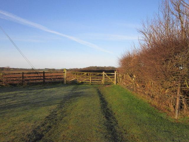 A bridleway leading to Becca Home Farm