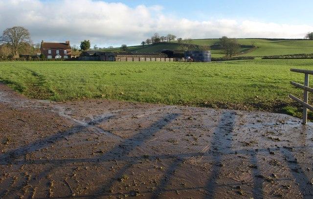 Towards Curscombe Farm