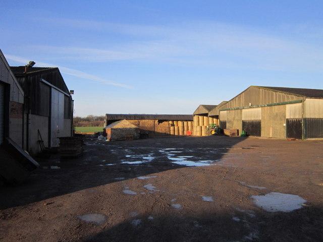 Becca Home Farm