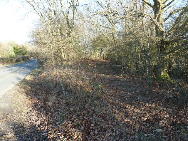 Footpath branching off North Common Road