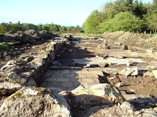 Fatlips excavation