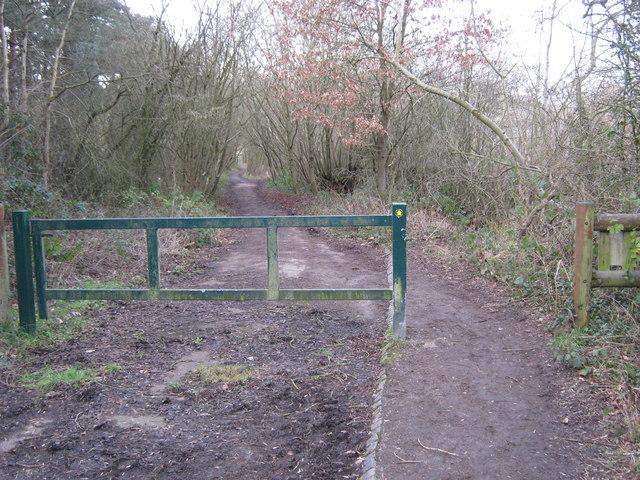 Gated old road, Ravenshaw