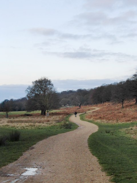The Tamsin Trail, near Ham Gate, Richmond Park