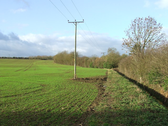 Footpath And Green Field