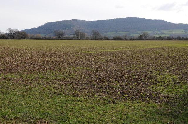 Arable land at Winforton