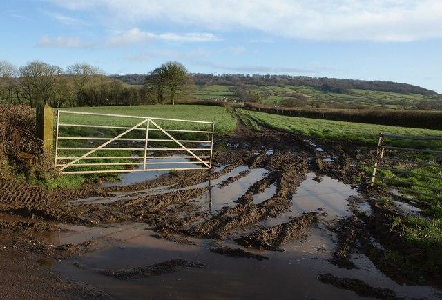 Field near Hunthay Farm