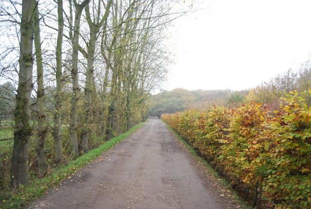 Woodlands Farm Track