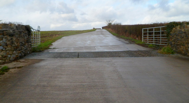 Cattle grid across farm entrance road near St Hilary