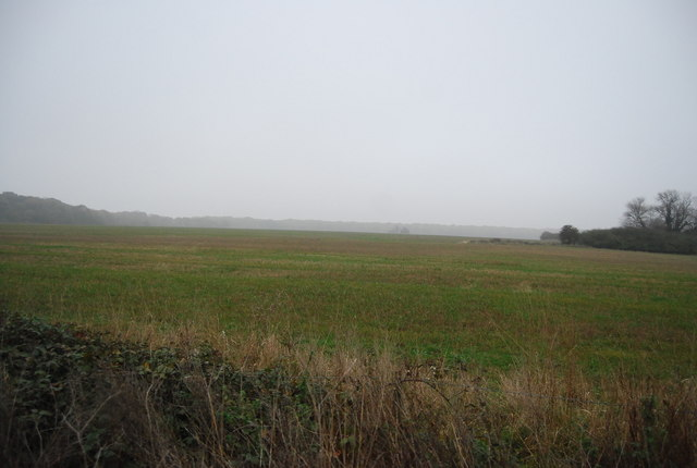 Field east of Canterbury Rd