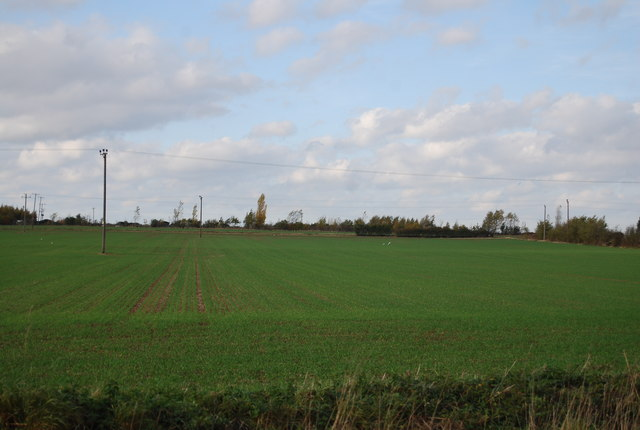 Farmland by the Ratcliffe Highway