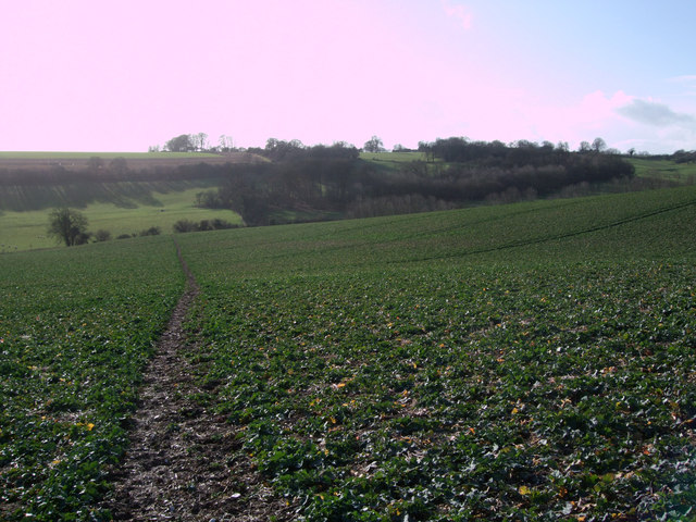 Bridleway from Upper Upham to Snap
