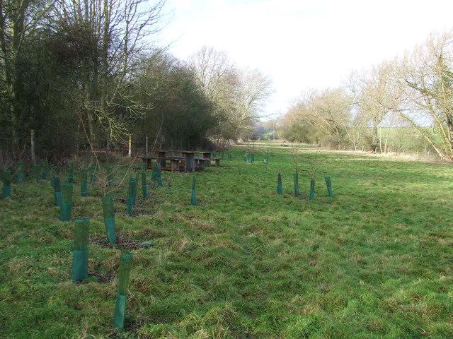 Earls Meadow