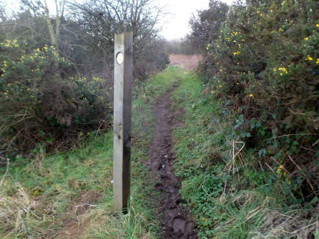 Muddy track to St Hilary Down