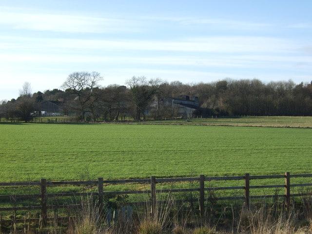 Farmland, West Woods Farm