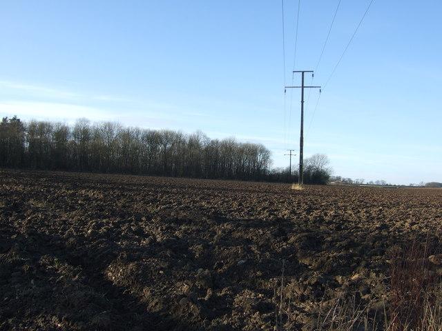 Farmland, West Woods
