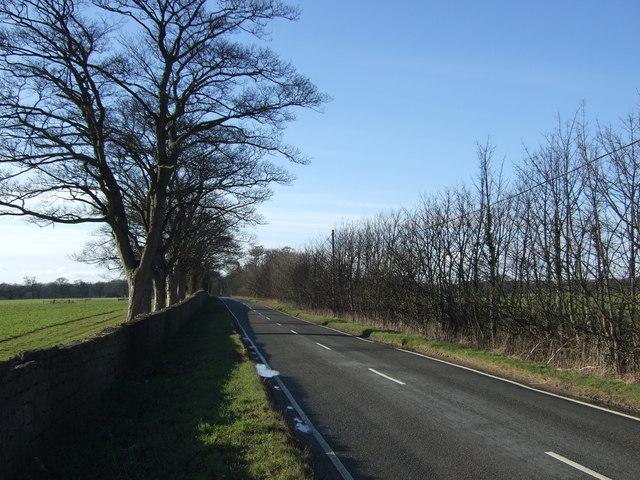 Thorner Road heading west