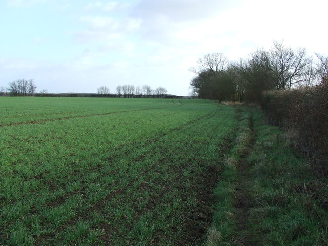 Field Boundary And Footpath