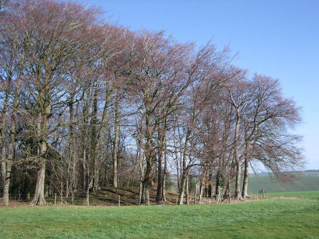 The Giant's Grave Bronze Age round barrow