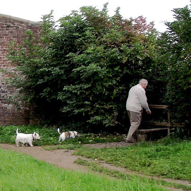 Stile by Andre Mills Bridge near Stone, Staffordshire