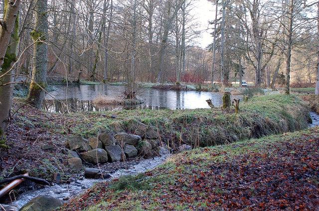 Pond, Portmore Estate