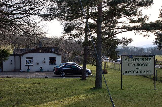 Scots Pine Tearoom, Eddleston