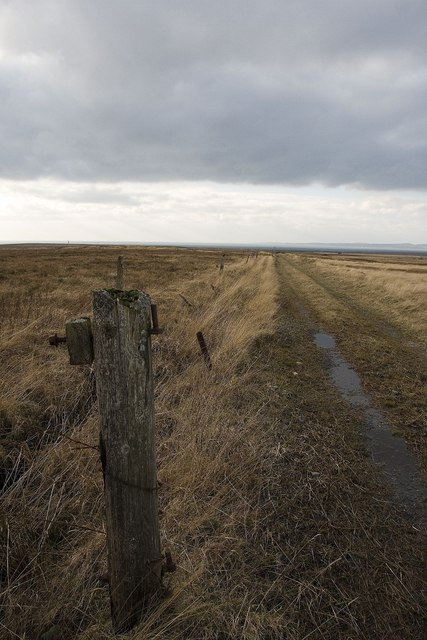 Fencepost and Track at Duich Lots, Islay