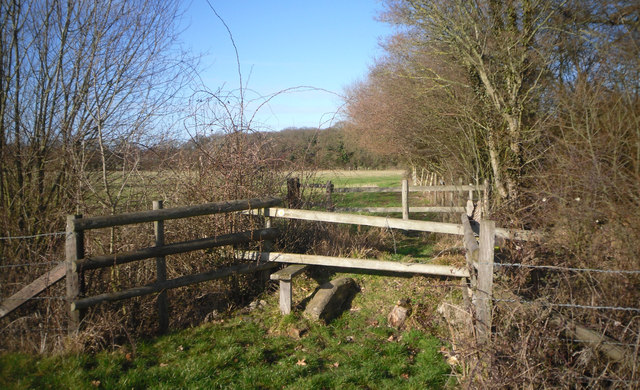 Footpath Over The Brook