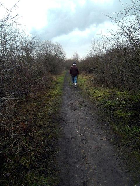 Footpath on disused railway line.