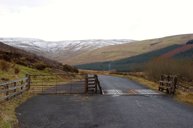 Cattle grid on the B709