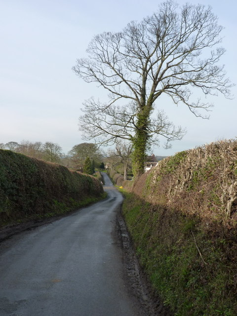 The lane into Great Lyth