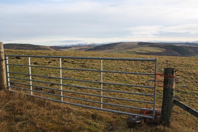 Gate on Cnoc Fergan