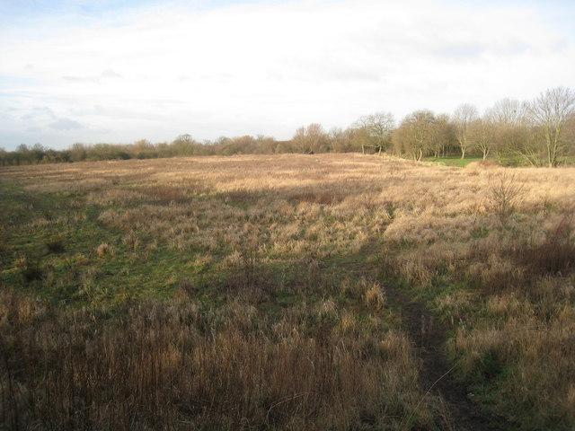 Waste ground near Thorne Lock