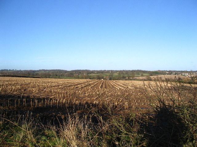 Stubble field near Allesley