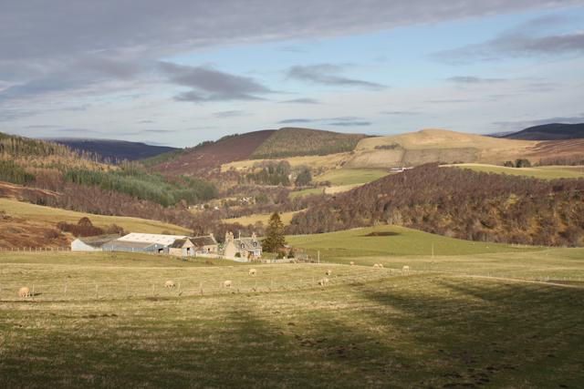 Easter Fodderletter Farm