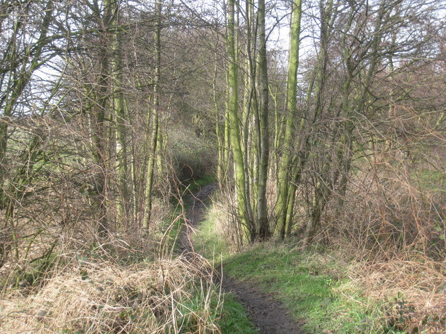 Thorne to Stainforth footpath