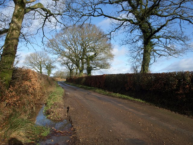 Lane to Limer's Cross