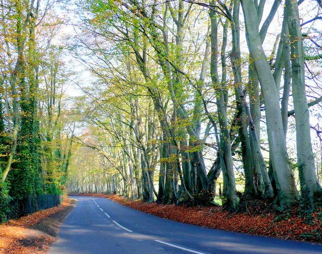 Arrowsmith Road