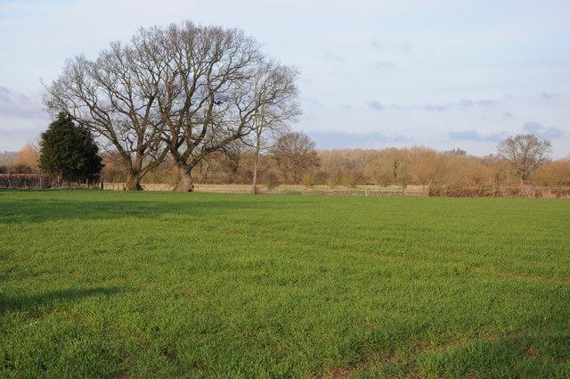 Farmland near Willersley