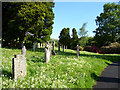 NY4102 : Graveyard, Jesus Church, Troutbeck, Cumbria by Christine Matthews