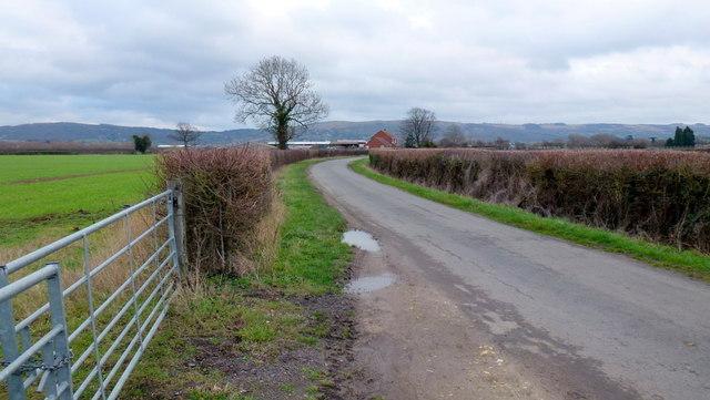 Brockhampton Lane