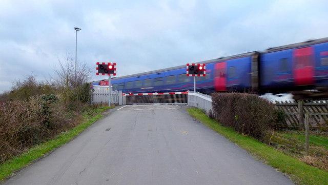 The train cometh