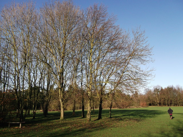 Douce's Meadow (2), Manor Park Country Park