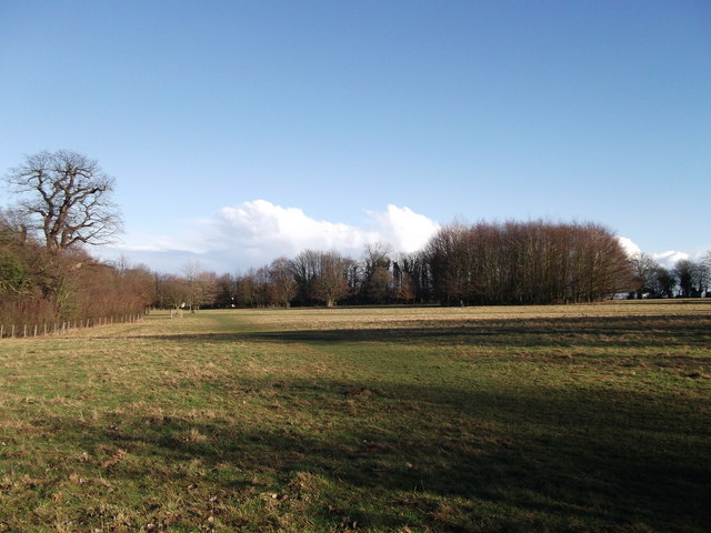 Abbey Field, Manor Park Country Park