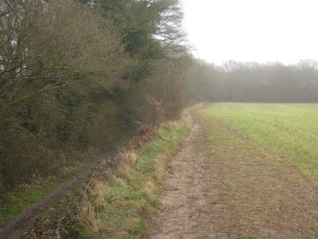 Path along Copse Ground Field (10 acres)