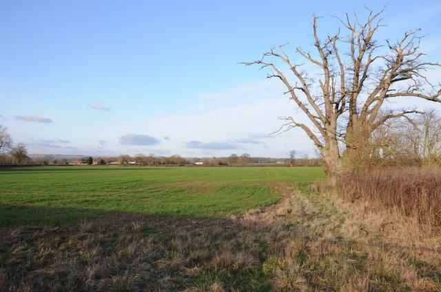 Arable land near Willersley