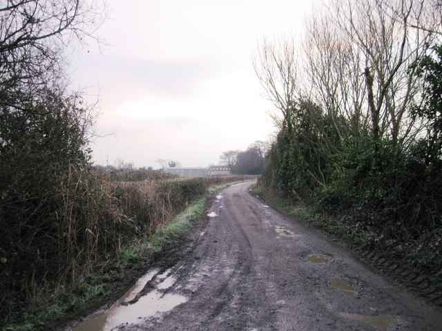 Ham Lane from Bramble Farm