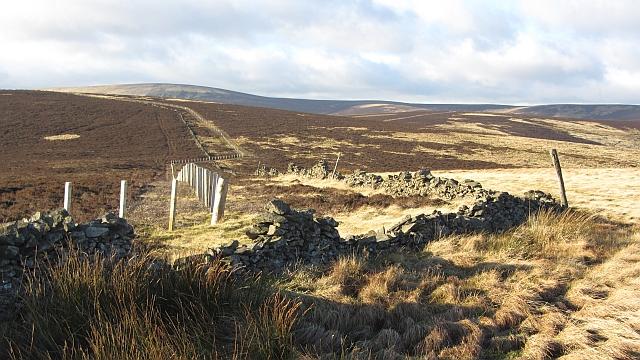 Dyke on Ferniehirst Hill