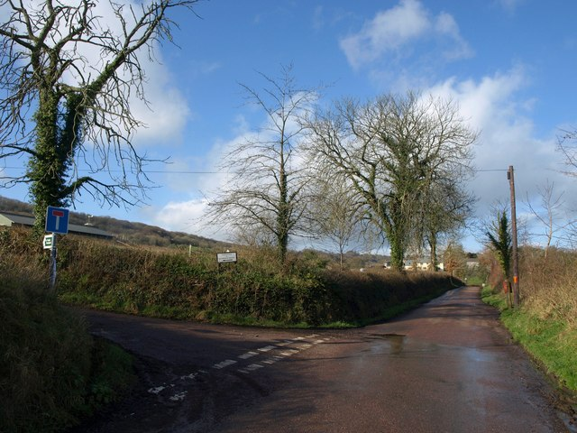 Lane junction near Combe Raleigh